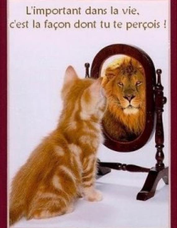 Bonne journée: Sois fier(e) de toi!