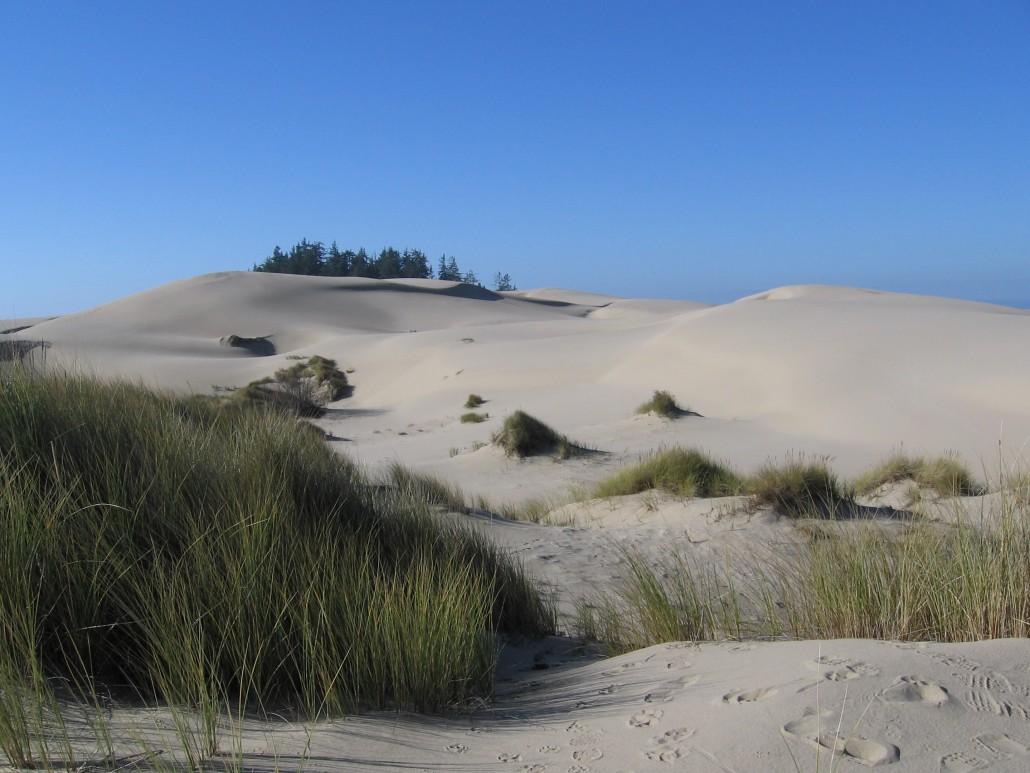 Oregon Dunes USA